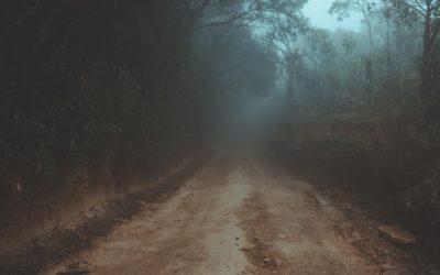 Leading Through Fear